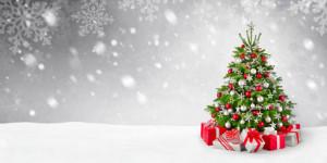 Weihnachtsbaum-im-Schnee