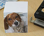 pers nlichen notizblock selbst gestalten notizblock w rfel mit foto bedrucken geschenke. Black Bedroom Furniture Sets. Home Design Ideas